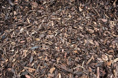 Ornamental Bark 40Ltr Bag